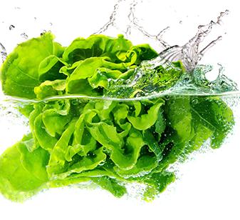 Prepack processors for fresh cut vegetables