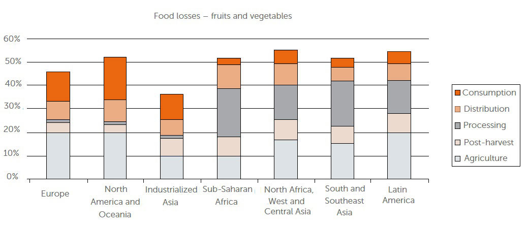 Chart of the fruit and vegetables losses of different continents