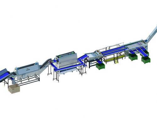Carrot processing line 450 series (3)